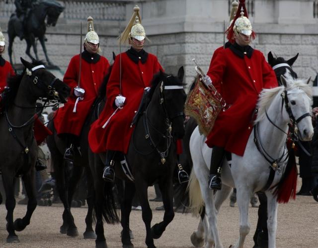 horse-guard-retreat